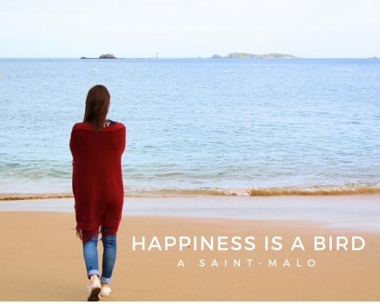 Happiness is a bird-2